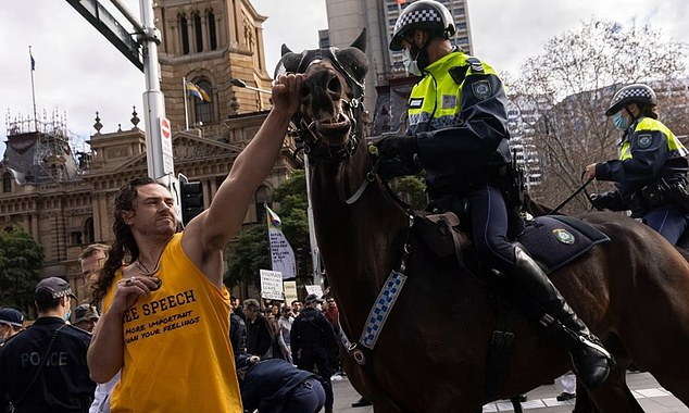 'I would horse-whip him myself': She condemned protestor Kristian Pulkownik, who was pictured 'punching' a police horse during a violent clash at the Sydney demonstration