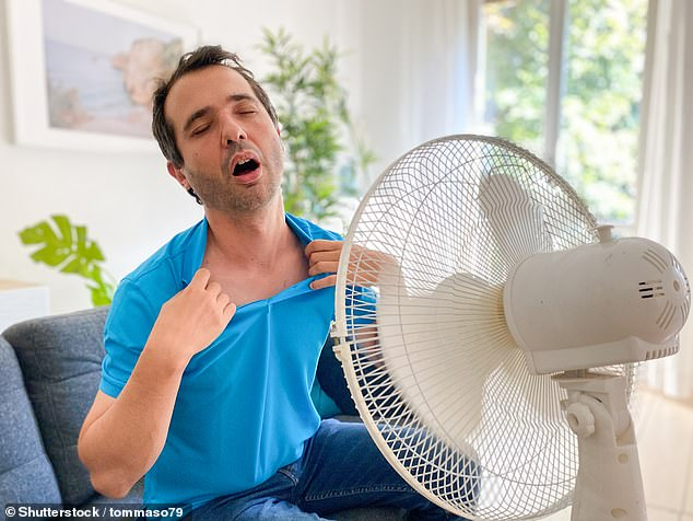 Overheating during the summer is experienced in more than 4.6 million homes across England, an analysis of the 2018 heatwave has estimated (stock image)
