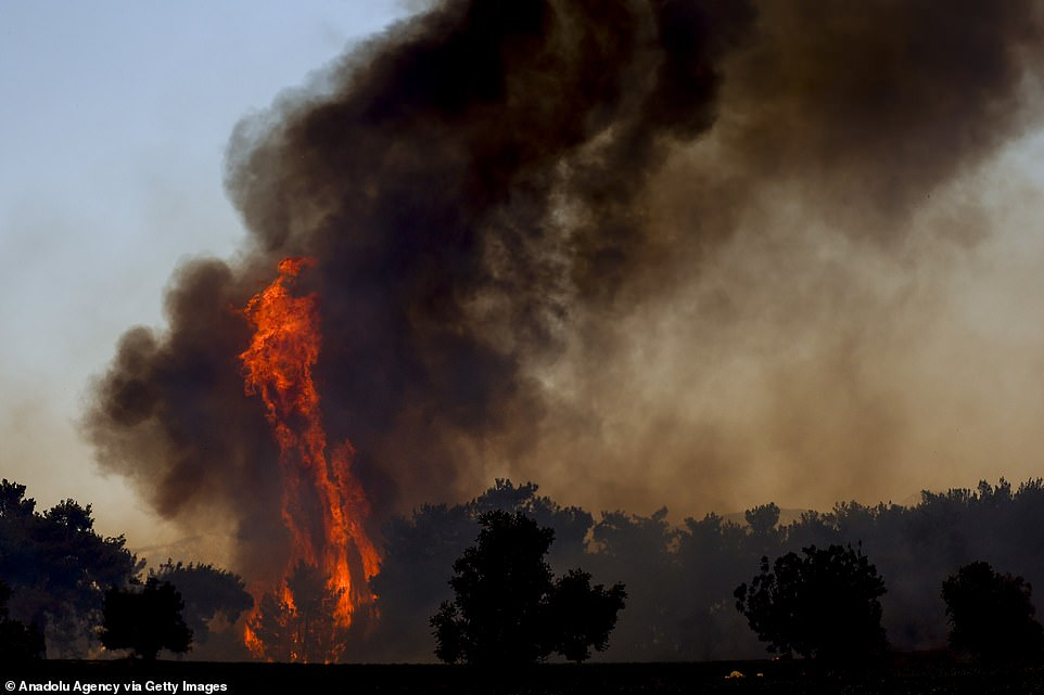 Plumes of black smoke were seen rising from the surrounding forest, blocking out the sky, in Manavgat after forest fires broke out