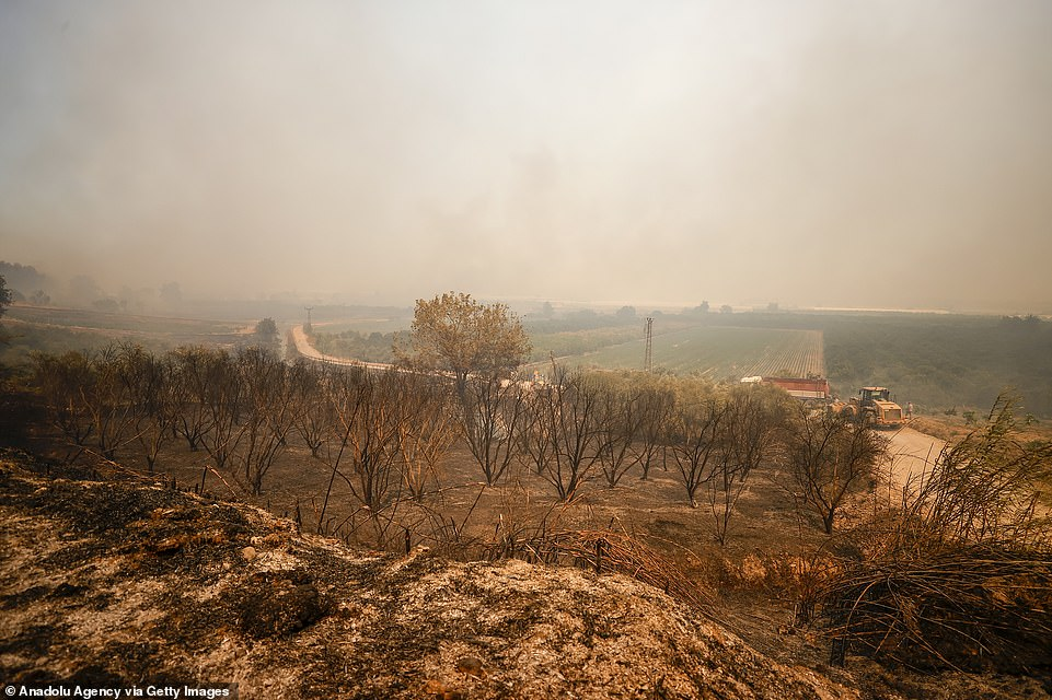 Smoke covers Manavgat district in southern Turkey after a forest fire broke out in on Wednesday and was fanned by strong winds