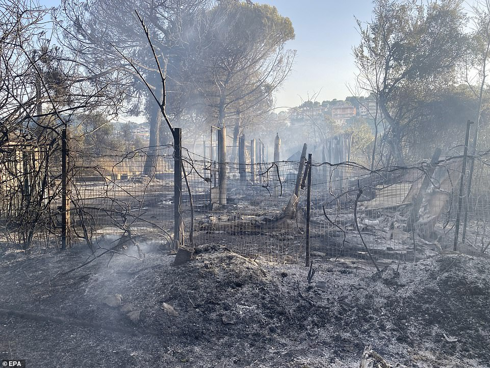 Flames destroyed areas in the Pineta Dannunziana nature reserve in Pescara, Italy