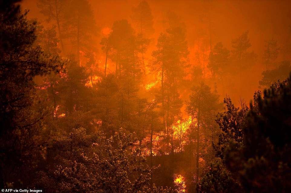 Flames rage on near the village of Gouves on Evia island earlier today