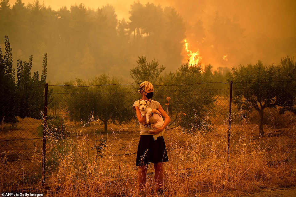 Fires burning on the Greek island of Evia have entered their seventh day, with smoke blotting out the sun as locals were forced to flee their homes as they burned to the ground (pictured, a woman evacuates with her dog)