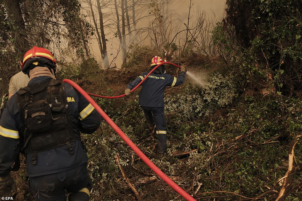 Firefighters battle flames during a wildfire at the village of Istiaia in the island of Evia, Greece