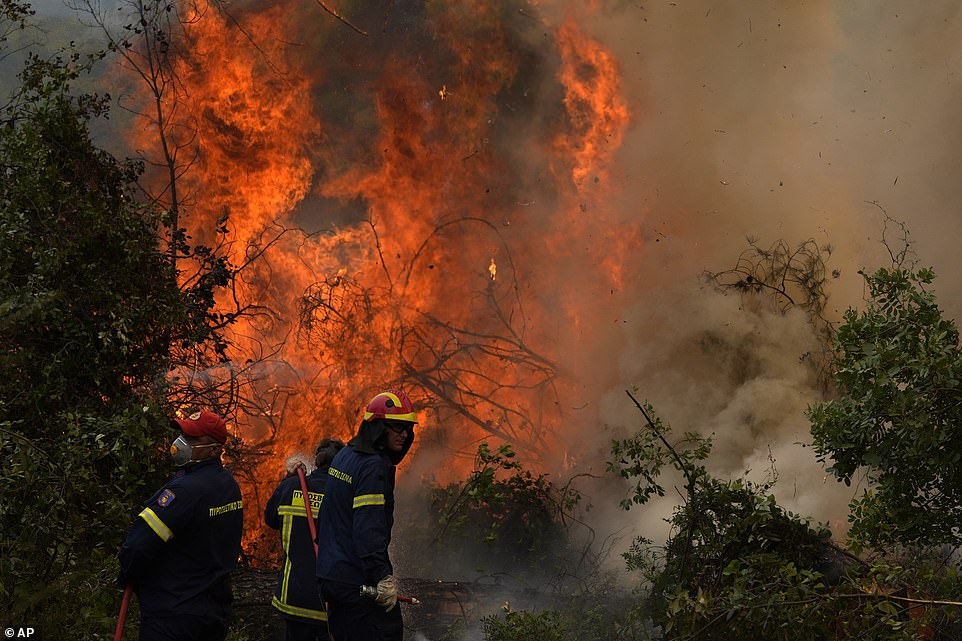 Fires scorching the Greek island of Evia are burning for a seventh straight day today, with emergency workers battling to bring them under control (pictured near the town ofEllinika)