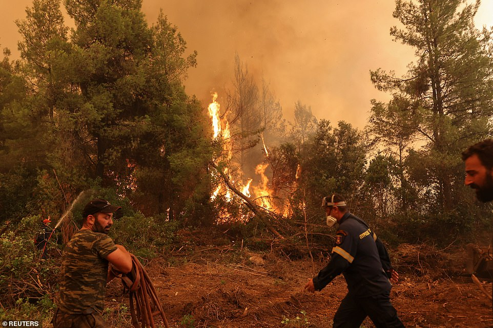 Firefighters and volunteers try to extinguish a wildfire burning in the village of Galatsona, on the island of Evia