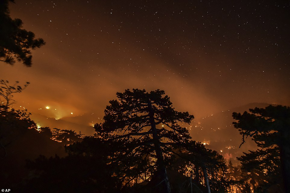 A fire lit up the sky in the forest in Senyayla village near the tourist resort of Marmaris, in Mugla, Turkey, on Saturday