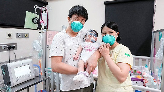 Despite her small size and being born four months premature, she has survived and was discharged from the hospital's Neonatal Intensive care unit after 13 months with a weight of 6.3kg (13 pounds and 14 ounces). Pictured:Kwek Wee Liang (left) and Wong Mei Ling (right) with Yu Xuan when she was discharged from hospital