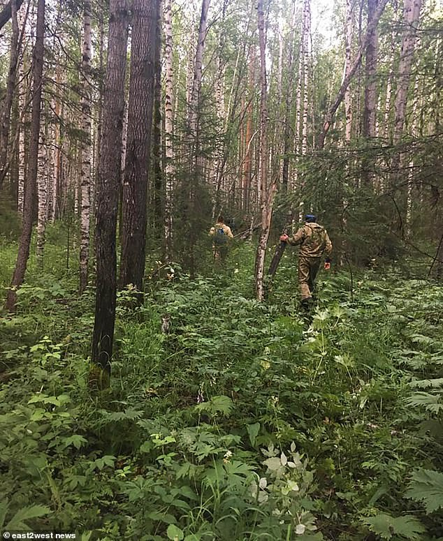 But rescuers were unable to track her. They used trained sniffer dogs to track her trail, but the search animals became agitated when her path crossed with the smell of multiple bears, said reports