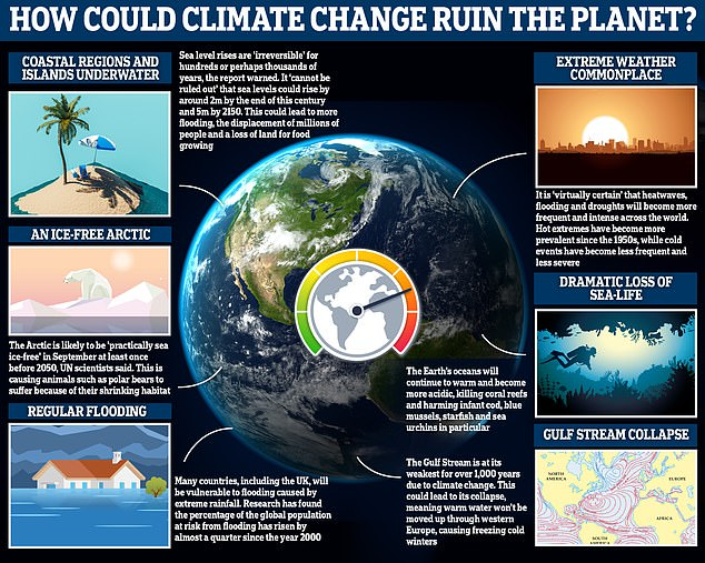 If temperatures continue to rise, there could be devastating effects here on Earth, including a dramatic loss of sea-life, an ice-free Arctic and more regular 'extreme' weather