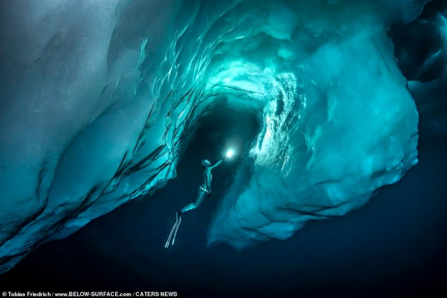 Anna von Boetticher free-diving under enormous icebergs in Greenland