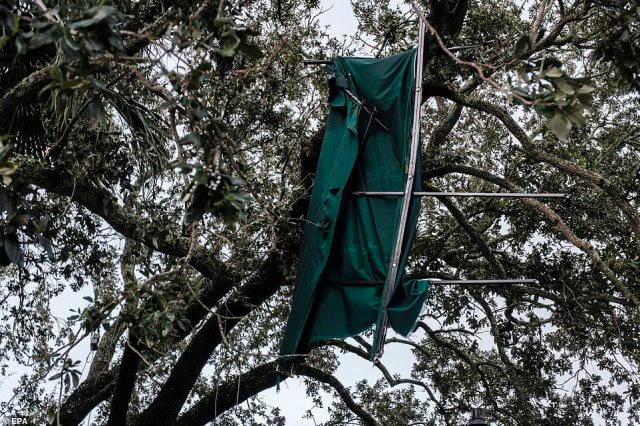 A piece of Cafe Du Monde is wrapped in a tree in the French Quarter due to Hurricane Ida in New Orleans