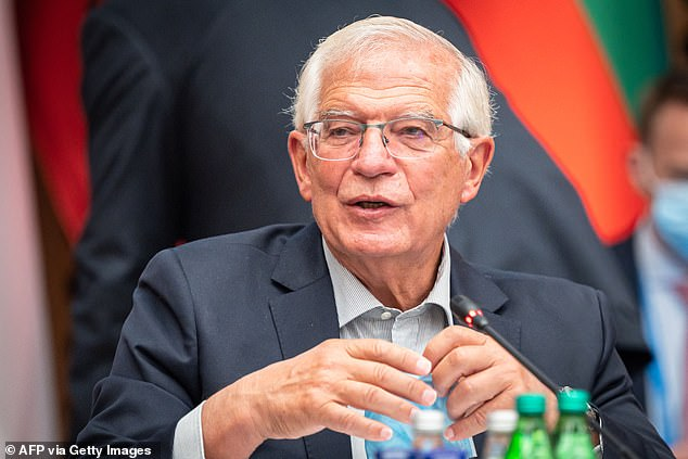 EU foreign affairs chief Josep Borrell (pictured) said the EU should 'combine our forces' and 'develop our own capabilities'
