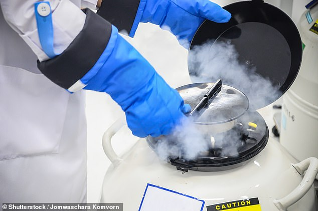 Prospective parents will be asked at ten-year intervals if they wish to keep or dispose of frozen eggs, sperm and embryos (pictured: Sperm freezing tank)