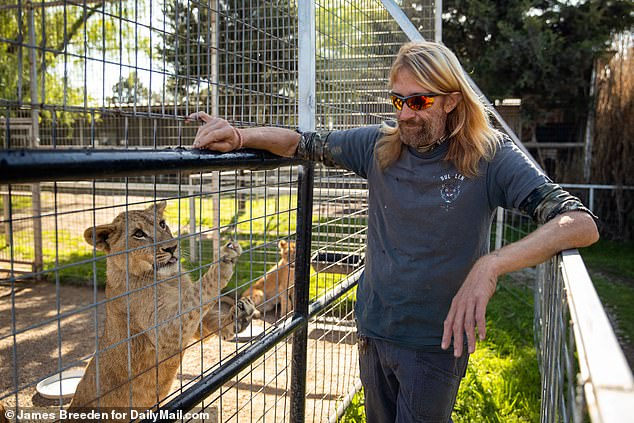 Animal instincts: Erik worked as an animal caretaker who looked after several big cats. He had been at the zoo for many years and even stayed on after Joe was incarcerated