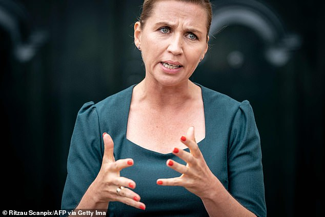 The proposal was tabled by the Social Democratic government (pictured, party leader and Prime Minister Mette Frederiksen) who claim women of foreign descent remain outside the labour market