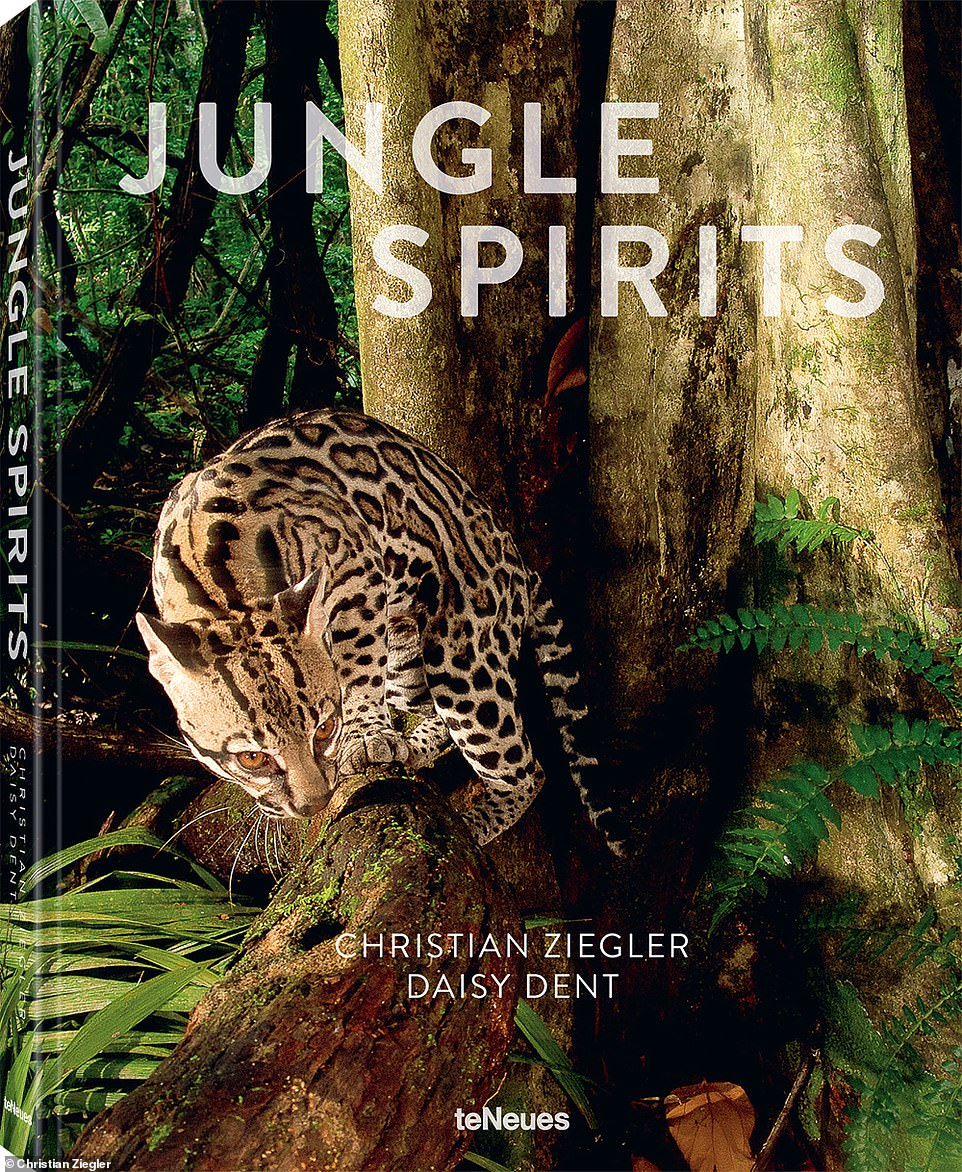 Jungle Spirits by Christian Ziegler and Daisy Dent is published by teNeues (€39.90/$55/£35,www.teneues.com)