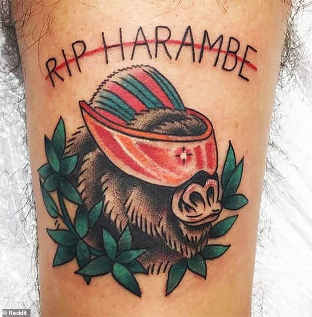 Furry bad idea! One animal lover had second thoughts after getting a tattoo in memory of Harambe the gorilla who was shot dead atCincinnati Zoo, after he grabbed a three-year-old boy who climbed into his enclosure