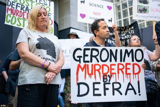 Helen Macdonald (left) joins members of the Justice for Geronimo and Stop Badger Cull campaigns at a protest outside the offices of Department for Environment, Food and Rural Affairs (Defra) in central London against the killing of the alpaca. Picture date: Wednesday September 8, 2021
