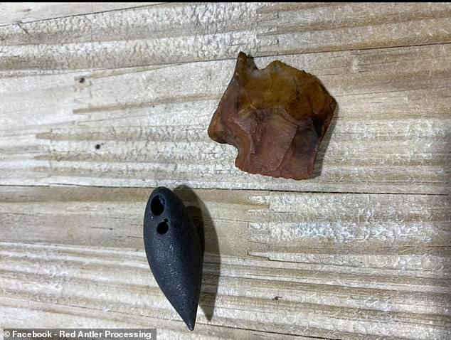 Contents included a dart point dating back as far as 6000 BC and a plummet from 1700 BC