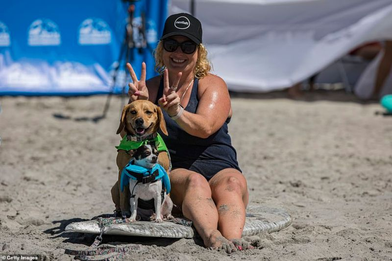 A woman poses on a surf board with her two dogs