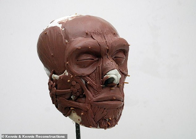 The picture is one of the steps in the creation of Krizen's face, before the skin and hair are added.