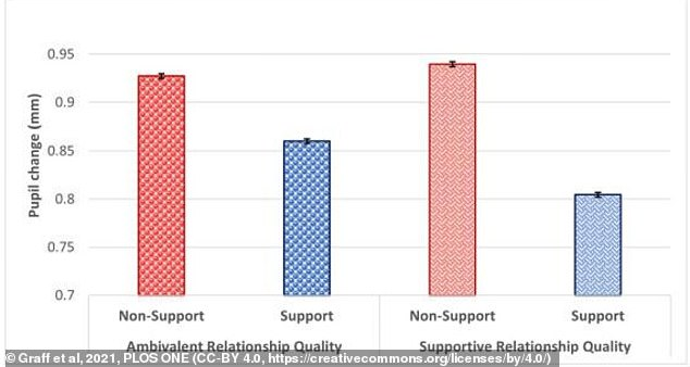 Participants who received emotional support (blue) in the form of holding hands showed a weaker pupil stress response.  People who are in supportive marital relationships benefited more from the emotional support of a spouse than those who were bisexual
