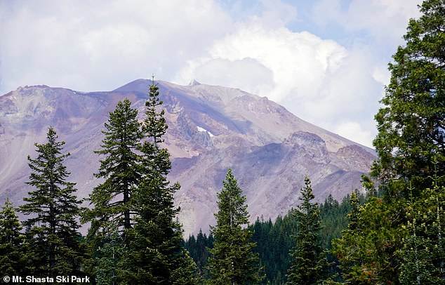 Record heawaves and drought have left California's Mount Shasts nearly snowless. This August 24 post from Mount Shasta Ski Park shows the iconic summit seemingly devoid of almost all powder.