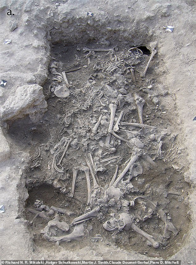 DNA and isotope analysis of their teeth further confirmed that some of the men originated in Europe, while others were the offspring of Crusader settlers who moved to the 'Holy Land' and intermarried with local people.