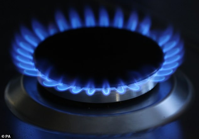 Several smaller energy suppliers have already folded with the hope of closing many more businesses.