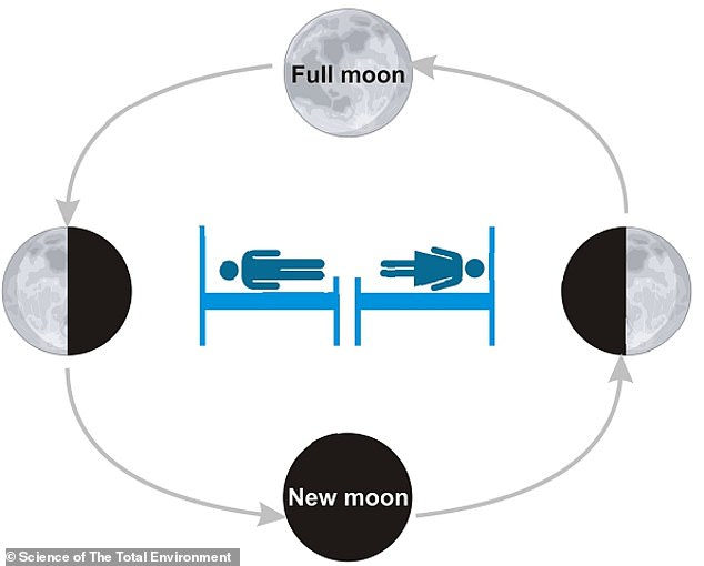 From the day after the new moon to the day of the full moon (also called the waxing period), the moon's illumination increases, and the time of the moon's meridian gradually shifts from noon to midnight.  Conversely, from the day after the full moon to the new moon (also known as the diminutive period), the moon's illumination decreases, and the time of the moon's meridian gradually shifts from the early hours of the night to the afternoon. Is.