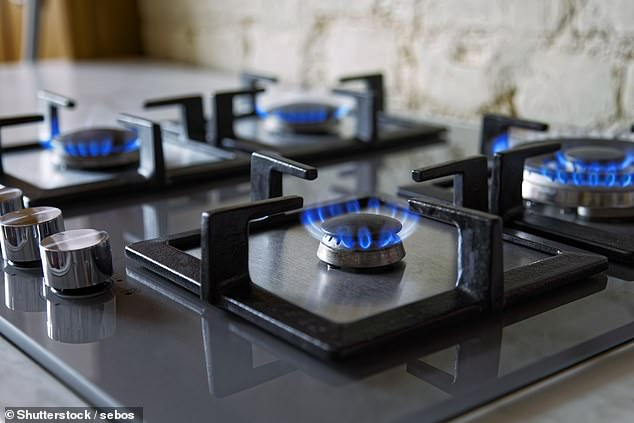 British Gas rivals People's Energy's 350,000 domestic and 1,000 non-domestic customers