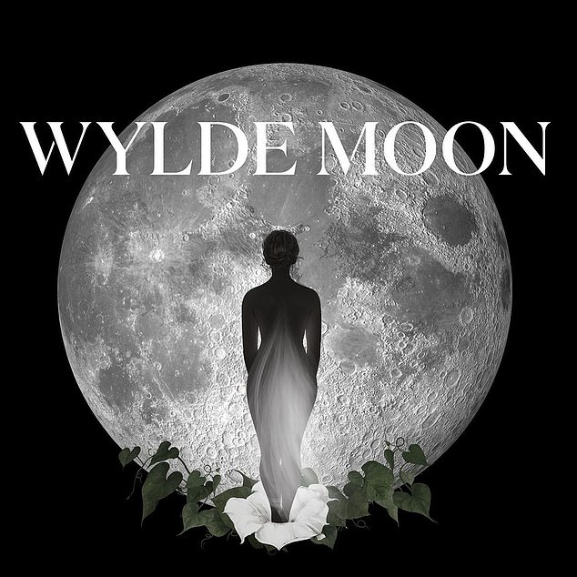 New project: In an Instagram post announcing the site's launch, Holly wrote: 'Welcome to WYLDE MOON, a space created by @hollywilloughby where she will be sharing the people, places, practices and products that she loves'