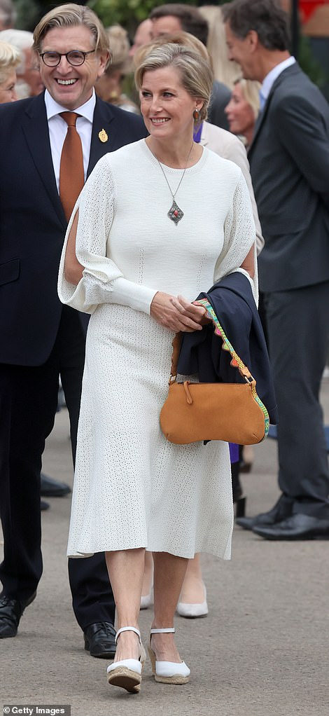 Sophie paired the dress with a brown leather bag which matched her stylish sleeves