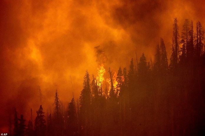 The windy fire burns along a ridge in Sequoia National Forest, California, on Monday