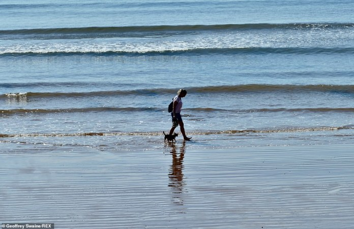 A woman walks her dog in the shallow waters at Jacobs Ladder Beach, in Sidmouth, Devon, on the last official day of summer in the UK
