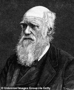 Charles Darwin (pictured) had pigeons, and provided important evidence for his theory that changed the world - evolution by natural selection