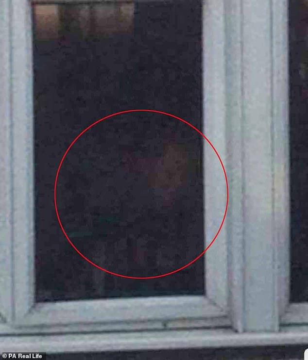 Horror: Charlene Smith, from Essex, claims her council house was haunted by a violent ghost between 2015 and 2018.  Charlene claims to have captured the spirit on camera (above)