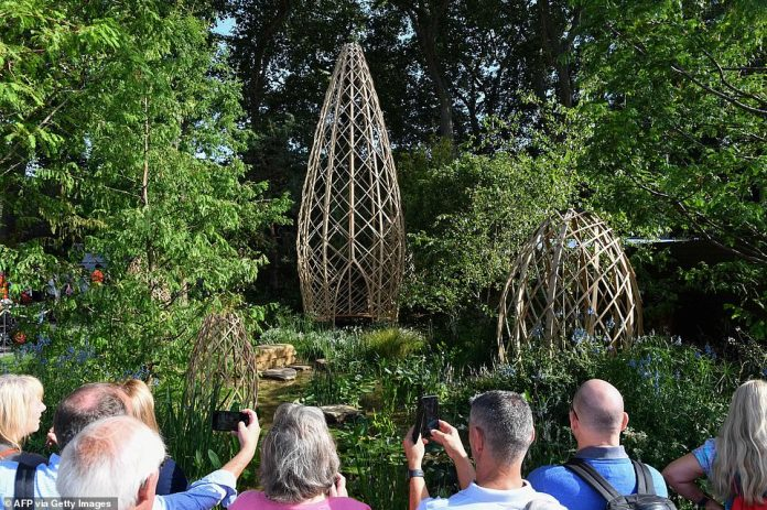 The winning garden also features a woodland dale to promote clean air, a pool of water, and bamboo shelters for people to gather and home to wildlife.  Dawn redwood, Scots pine, field maple and birch tree make up the woodland edge