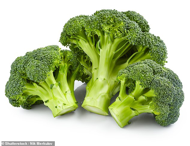 These are all members of the vegetable family that also includes cabbage, collard greens, kale and turnips, and are often left on the side of a child's dinner plate.  stock image