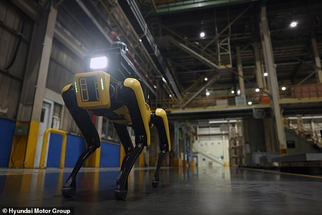 Hyundai hasa new site safety officer at one of its Kia assembly factories in South Korea — Spot, Boston Dynamic's famous and oft-dancing robotic dog, pictured