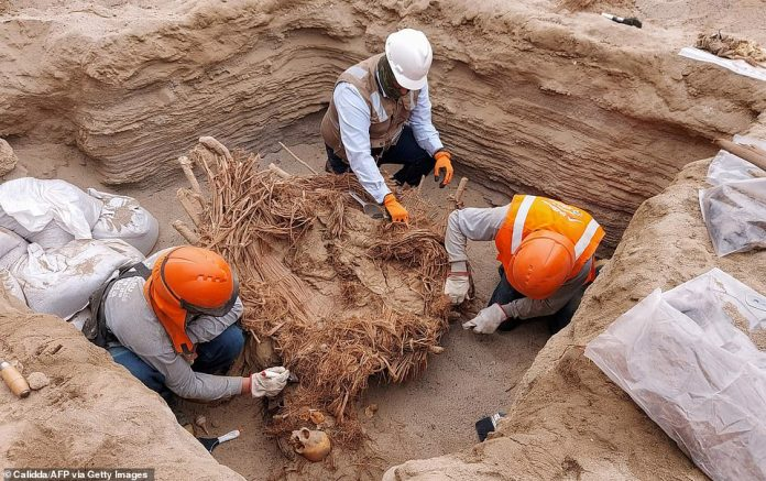 Archaeologists are working through the remains to better understand the people who lived in the pre-Hispanic village