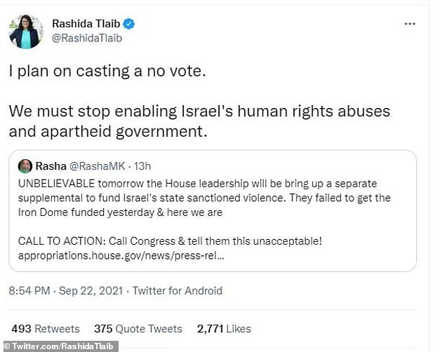 Tlaib, the only Palestinian American in Congress, announced her intention to vote against the measure on Wednesday night