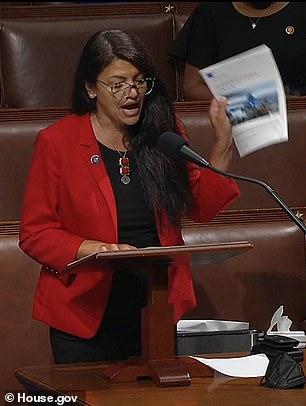 Representative Rashida Tlaib urged her colleagues to vote against funding for Israel's 'apartheid regime'