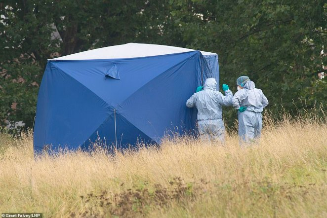 Experts have sealed off large parts of the park as their murder investigation continues. Pictured above: forensics tent in Cator Park in Kidbrooke, south east London, where the teacher was found dead