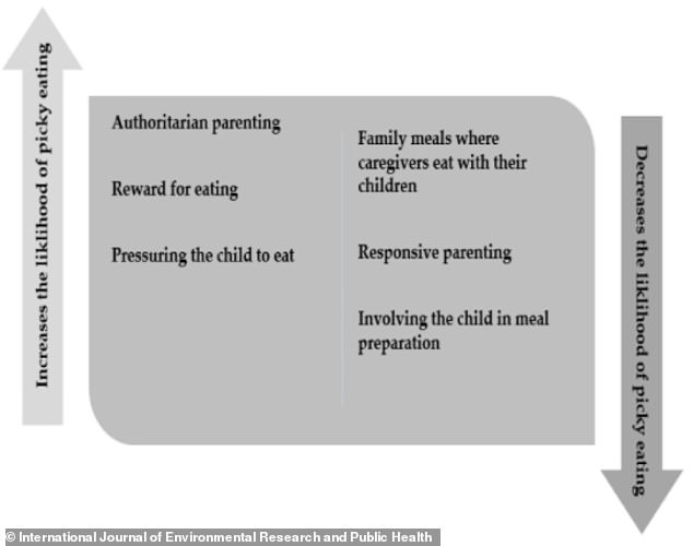 Graphic from research paper showing factors that increase and decrease fussy eating in children