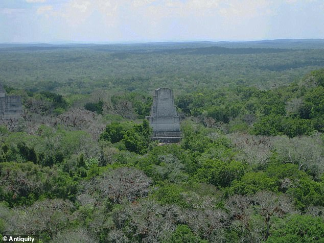 Temple IV in Tikal, which has become one of the most well-understood and most well-studied archaeological sites in the world