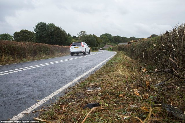 Pictured: The road at Partridge Green, Sussex, where the incident involving Katie Price took place this morning