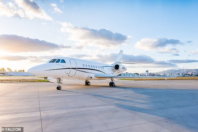 The luxury 10-seat Dassault Falcon 2000LX plane is owned by Guthy-Renker companyGRP Aviation LLC, according to records, but is also rented out to charter service Clay Lacy