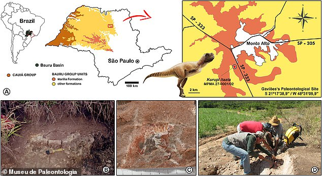 Its remains were found in Monte Alto (pictured), a municipality in the state of So Paulo that is one of Brazil's richest sites for dinosaur discoveries.
